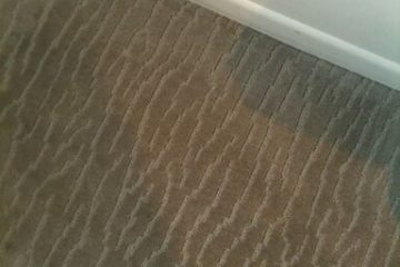 Silverdale carpet cleaner